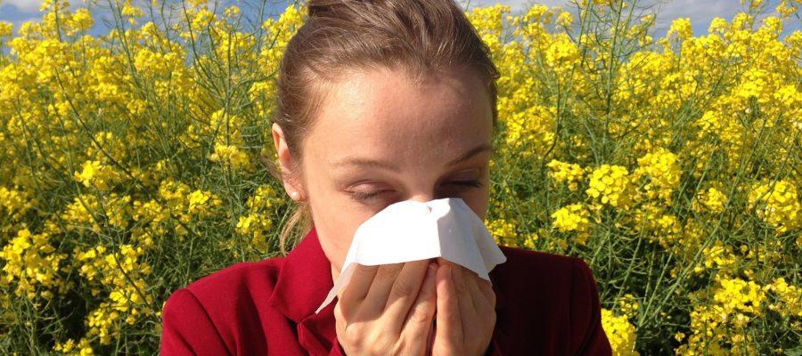 leczenie alergii wrocław