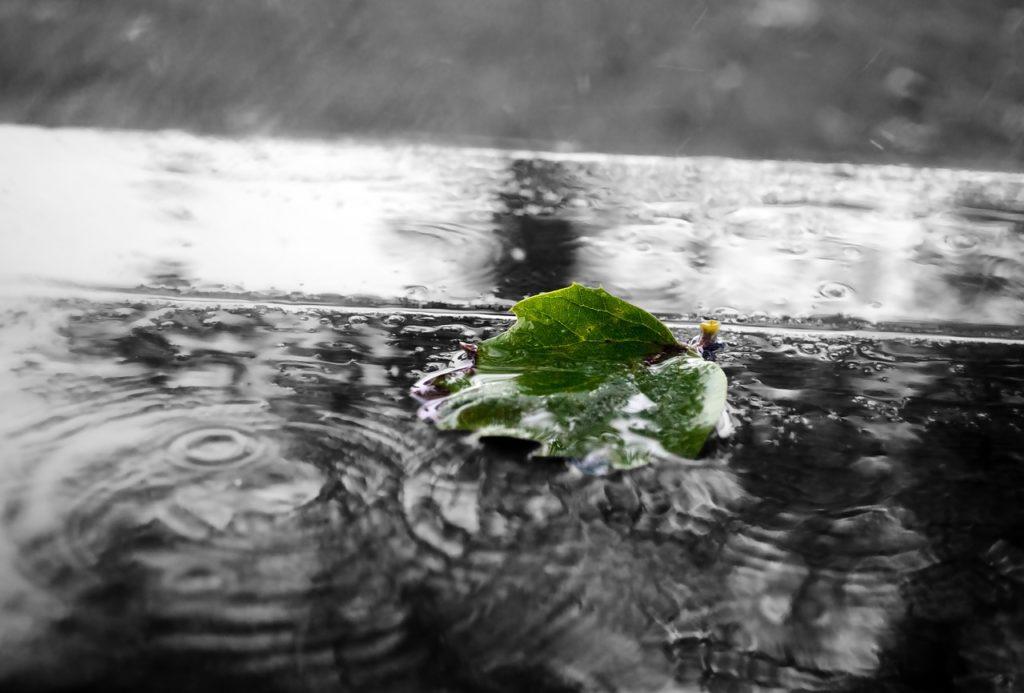 oczyszczanie wód opadowych